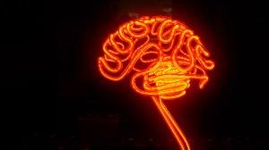 neon-brain
